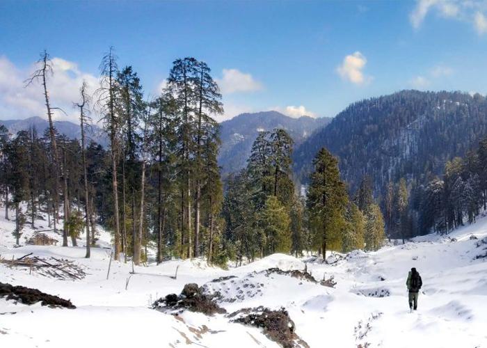 view of Saraswati Campsite