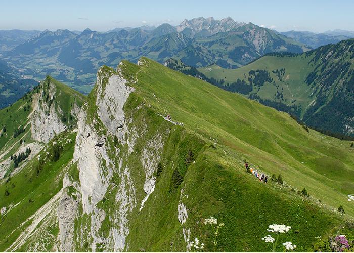 Phulara ridge during summers