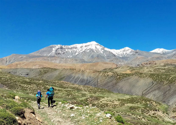 Kanamo Peak Trek 4