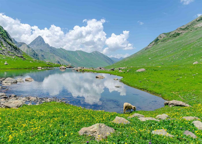 Kashmir Great Lakes Trek 9