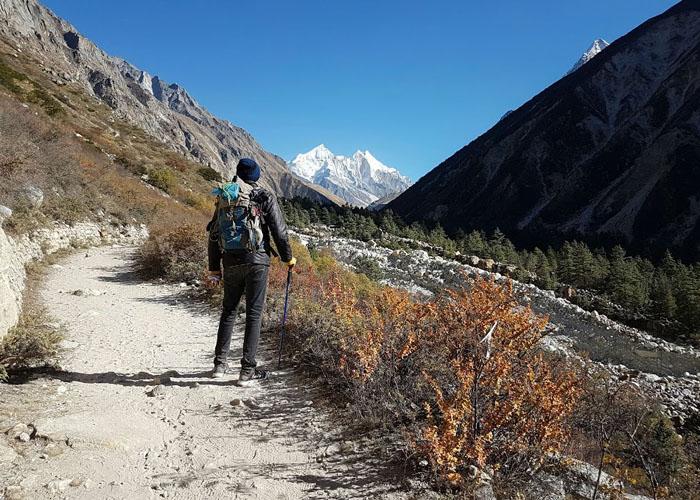 A Traveller on Gaumukh Tapovan Trek